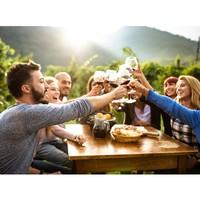 Il fait beau, il fait chaud ! On s'invite et on trinque autour d'un bon vin ✨ #aries #ariesvins #copainsdegrandscrus #vinsdebordeaux #grandscrus #wine #vin #bonsvins #adeguster #degustation #entreamis #degusteraveclescopains #unbonvinentrecopains #culturevin #cestleprintemps #spring #vigne #vignoble #danslesvignes #vinblanc #vinrose #vinrouge #grandvindebordeaux #tchin #trinquerademain