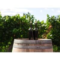 Le vin est un mystère en bouteille… et vous, quelles sont les émotions que vous partagez avec vos vins préférés ? 😉 #aries #ariesvins #copainsdegrandscrus #vinsdebordeaux #grandscrus #wine #vin #bonsvins #adeguster #degustation #entreamis #degusteraveclescopains #unbonvinentrecopains #culturevin #barriques #danslesvignes #mystere #unebonnebouteille #winewinewine #tchin #achacunsonvin #vinblanc #vinrouge #vinrose